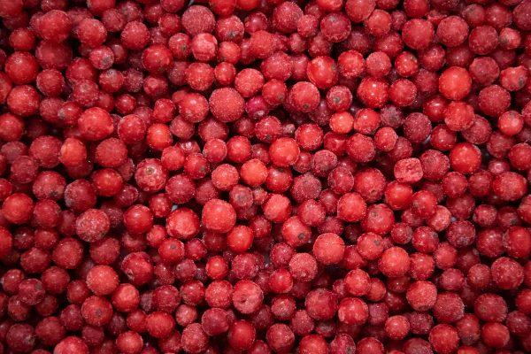 Šaldyti raudonieji serbentai
